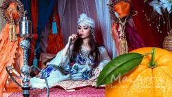 Aromat shisha orange