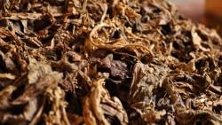 Aromat dark tobacco