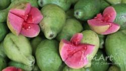 Aromat guawa