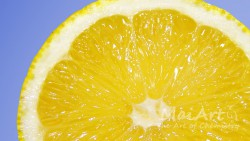Premix cytryna