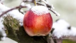 Aromat cool apples
