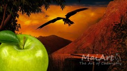 Aromat dragon's apple